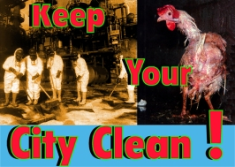 Keep Your City Clean
